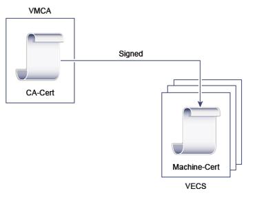 VMCA3